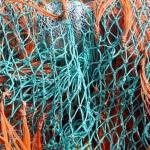 Samenwerking-netwerk-Praktijk-josé-dusol